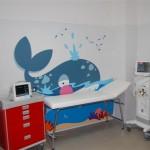 Bando di concorso per Borsa di Ricerca destinata ad un medico specialista in Pediatria presso Ospedale Santa Maria Goretti di Latina